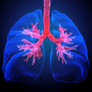 Interstitial-Lung-Disease-Research-2x